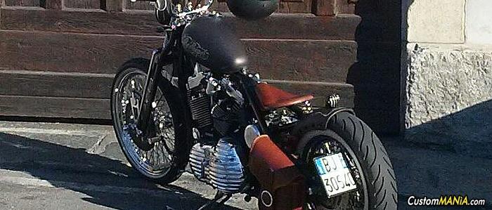 harley-davidson-sportster-xl1200c-custom