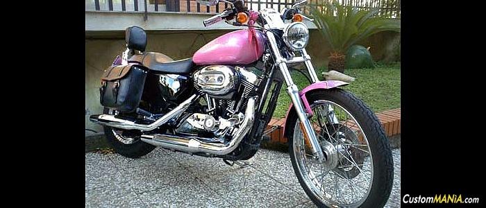 harley-davidson-sportster-xl883c-custom
