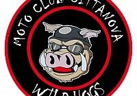 motoclub wild hogs